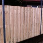 timber (2)