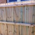 timber (5)